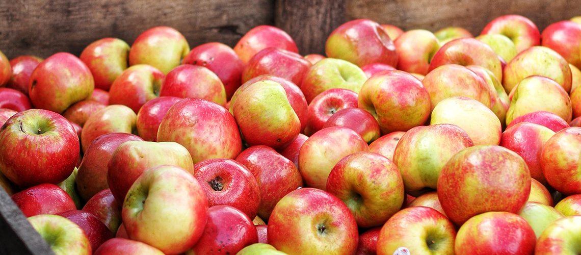 fareshare-apples